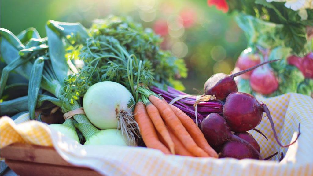 nutrición natural hixienista carballo